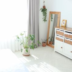 오전 #햇빛샤워 를 해봅시다 🌿 식물 1도 관심 없던 사람이었는데 요즘 매일매일 초록가족들 크는 거 보는 재미로 살아요~  #하니씨네 #식물초보자 의 #식물인테리어 🍀 Divider, Room, Furniture, Home Decor, Bedroom, Decoration Home, Room Decor, Home Furnishings, Arredamento