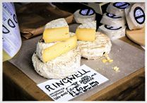 Dorset Cheese Festival