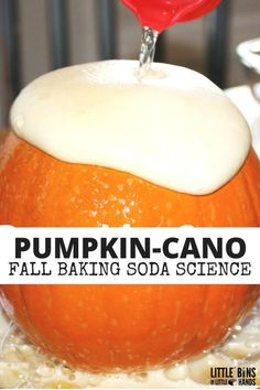 Pumpkin Volcano Science Activity Baking Soda Science is part of Fall Science Preschool - A pumpkin volcano science activity is a must try for fall ! Chemical reactions are fascinating Make you baking soda science unique with a pumpkin volcano Autumn Activities For Kids, Fall Preschool, Kindergarten Science, Halloween Activities, Preschool Activities, Preschool Halloween, Apple Activities, Kindergarten Themes, Teaching Science
