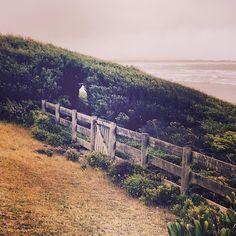 Secret beach walks #portfairy by laurenwilliamsjewellery http://ift.tt/1UokfWI