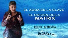El AGUA es la Clave   El Origen de LA MATRIX   Edith Almeyda