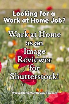 Shutterstock is hiring work at home image reviewers in the United States. These are freelance work from home positions. You will create your own schedule. If you're seeking a home-based position, and you have an interest in photography, then this might be the perfect remote job for you! You can make money from home!