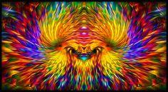 Phoenix Rising - ( R