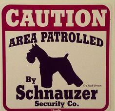 """Dog Yard Sign """"Caution Area Patrolled By Schnauzer Security Company"""" Raza Schnauzer, Schnauzer Grooming, Schnauzer Puppy, Miniature Schnauzer Black, Giant Schnauzer, I Love Dogs, Puppy Love, Cute Dogs, Schnauzers"""