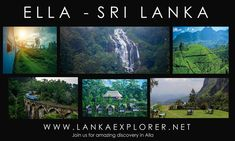 Sri Lanka tour packages are completely topped off with bliss, joy, undertakings, and love. Sri Lanka tour packages can be profited at all financial plan, Ella Sri Lanka, Sea Level, Flora And Fauna, Forests, Small Towns, Diversity, Discovery, Join, Clouds