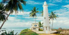 Travel Tip Tuesday: An Insider's Guide to Sri Lanka  #AnywhereAnytimeJourneys #TravelTipTuesday #SriLanka