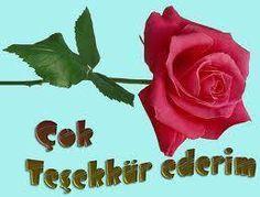 2 Kasým Günün sözü, günün sözü,ünlü düþünürden günün sözü, manalý günün sözü, hikmetli günün sözü, anlamlý manalý günün sözü,dost dediðin mevlanadan ve sevgili peygamberimizden güzel sözler, düþünür söz - Romantik resimler, Smileyler, Gifler, Gül Resimleri, Travel Guide, Tatil Merkezleri, Oteller, Hotels, Türkiyede Tatil, Türkiyenin en büyük resim sitesi