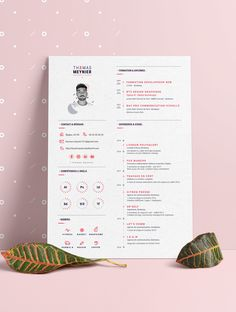 Graphic designer resume - Creative Resumes & Personal Branding - Graphic Designer Resume / CV Creative infographic resume by Thomas Meynier. Simple Resume Template, Resume Design Template, Cv Template, Resume Templates, Infographic Resume, Creative Infographic, Infographic Templates, Resume Layout, Resume Cv