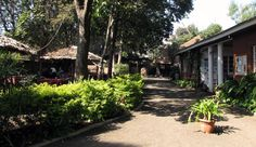 When craving for pizza, visit the Masai Cafe in Arusha. The interiour is beatiful