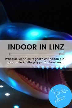 Indoor mit Kids in Linz Linz, Rainy Weather, Waterfall, Families, Road Trip Destinations