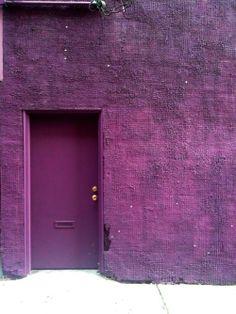 purple,purple  purple colour-pattern-texture