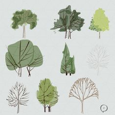 Tree Illustration, Graphic Illustration, Cartoon Trees, Plan Sketch, Landscape Architecture Drawing, Tree Sketches, Vector Trees, Weapon Concept Art, Entourage