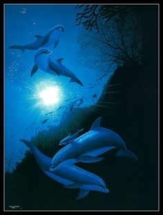 Dolphins in the Ocean by Wyland I saw him do one similar to this too!