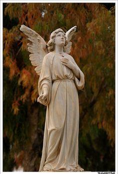 Angel looking toward the sky