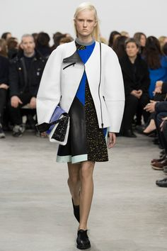 Proenza Schouler   Fall 2014 Ready-to-Wear Collection   Style.com