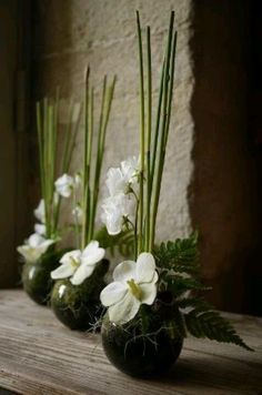 Ikebana white & green - Ikebana white & green How to Have the Bride Bouquet Ikebana Arrangements, Ikebana Flower Arrangement, Modern Flower Arrangements, Wedding Flower Arrangements, Flower Centerpieces, Flower Decorations, Wedding Centerpieces, Wedding Flowers, Wedding Bouquets