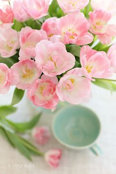 So Very Lovely Pink Flowers Spring