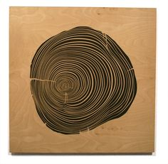 Rings | Todd St. John