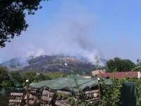 Incendio a Solfagnano: fiamme invadono vigneti e uliveti da circa due ore - FOTO - TUTTOGGI.info