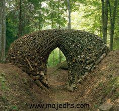 فن الارض http://majedhs.com/?p=9250