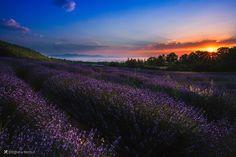 Fantastic sunrise by Vittorio Delli Ponti on 500px