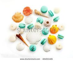 Blue and white macaron with colorful sea shells on a white background
