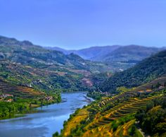 O Douro by siulzz on DeviantArt