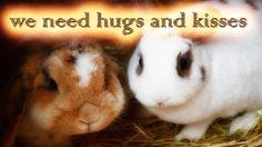 Hallo Kaninchenfans (^.^) heute zeigen wir euch Bella und Snow beim kuscheln, wir hoffen Ihr habt Spaß mit dem kurzen Video unserer Lieblinge. Wir wünschen euch noch einen schönen Abend (^_~)  Zum Kanal mit mehr Videos meiner Kaninchen:  https://www.youtube.com/user/kaninchenfanlucky/  abonniert uns, für mehr von meiner Rasselbande:  http://www.youtube.com/subscription_center?add_user=kaninchenfanlucky   #kaninchen #hasen #karnickel #rabbits #bunnies #haustiere #pets #youtube