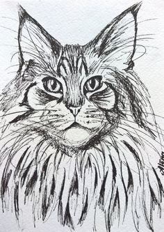 Items similar to PERFECT CHRISTMAS GIFT: Black and white cat drawing, maine coon drawing, black pen art on Etsy - Black and white cat drawing maine coon by AlenaUhlianicaArt - Maine Coon, Animal Sketches, Animal Drawings, Drawing Tutorials For Beginners, Cat Drawing, Drawing Ideas, Cat Cards, Fluffy Cat, Pen Art