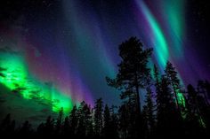 Aurora Borealis in Finnish Lapland (by The Aurora Zone)