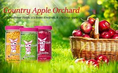 Pink Zebra Recipes: Country Apple Orchards.  Featuring Crisp Apple, Sweet Kiwifruit and Sunflower Fields