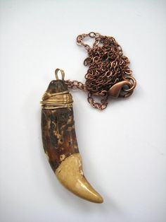 Wolf Tooth Necklace. $24.00, via Etsy.