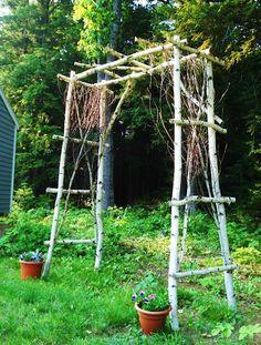 Birch garden arbor