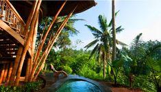 green village, ibuku, bamboo home, bali, green school, bamboo construction