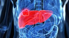 signs of liver damage and how to heal the liver from inflicted damage