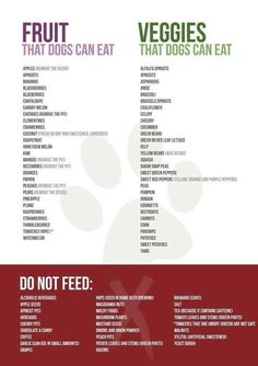 Fruits and veggies that dogs can eat