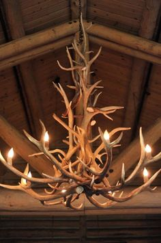 Antler-Chandelier hung in the middle of the clear tent