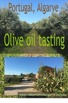 Weet jij ook nooit welke olijfolie je nu moet kiezen in de supermarkt of in een speciaalzaak? Er zijn zoveel varianten en de prijsverschillen zijn aanzienlijk. Welke variant is nu mijn smaak? Ik ben gewoon eens gaan proeven.  In het oosten van de Algarve in Moncarapacho ligt de olijfgaard Monterosa waar je een rondleiding met olijfolie-proeverij kunt boeken. Verderop ligt de mooie stad Tavira die ik daarna bezocht heb. #Algarve #Portugal #VakantiehuisAlgarve #Olijfolie Monte Gordo, Portugal Travel, New Adventures, Algarve, Plan Your Trip, Staycation, Thailand Travel, All Over The World, Travel Destinations