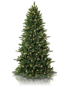 My birthstone is Emerald, so the Slim spruce tree is perfect for me. What about you?