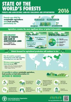 Halting #deforestation helps to increase agricultural productivity and #foodsecurity