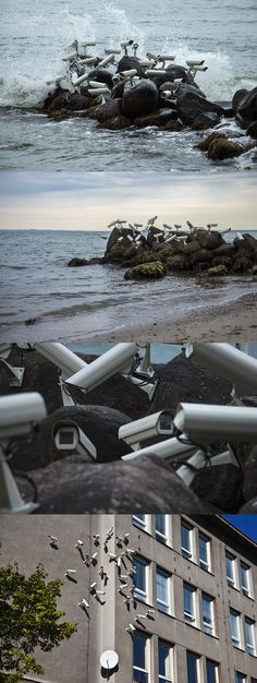 Artist Installs Flocks of Surveillance Cameras and Satellite Dishes in Outdoor Settings http://www.thisiscolossal.com/2015/07/surveillance-installations-jakub-geltner/