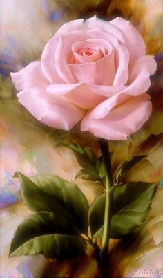 Pink Rose Art...beautiful