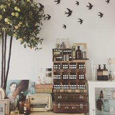 "@oliviasoaps en Instagram: ""Pues aquí huele muy bien... #oliviathehub #oliviasoaps"""