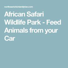 African Safari Wildlife Park - Feed Animals from your Car