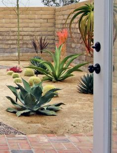 The trick to xeriscaping is using plants native to your area. By doing so, it's possible to create a striking landscape that thrives in it's environment.