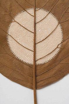 The German-born artist Susanna Bauer transforms fronds and branches and into intricate scupltures Crochet Leaves, Painted Leaves, Paper Artwork, Textiles Techniques, Crochet Art, Leaf Art, Nature Crafts, Wire Art, Art Plastique