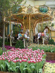 Spring 2011 Bellagio Conservatory | Flickr - Photo Sharing!