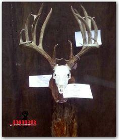 Non Typical King of Kansas Whitetail Crowned DHBB
