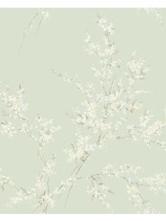AD8154 - Wallpaper | Inspired By Color - Green | AmericanBlinds.com