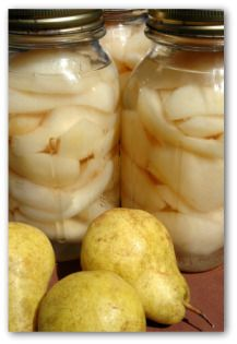 These are easy home canning recipes for canning pears, and we've included a few tips for using these pear recipes to make delicious canned fruit. Home Canning Recipes, Canning Tips, Canning Food Preservation, Preserving Food, Canning Pears, Fruit And Vegetable Storage, Canning Vegetables, Canned Food Storage, Pear Recipes